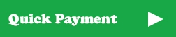 Make a quick payment